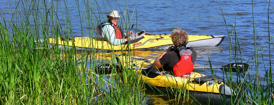 Photo of kayaking along thickets of tules offers calmer waters and opportunities to observe wildlife